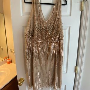 Size 20 Adrianna Papell dress never worn!